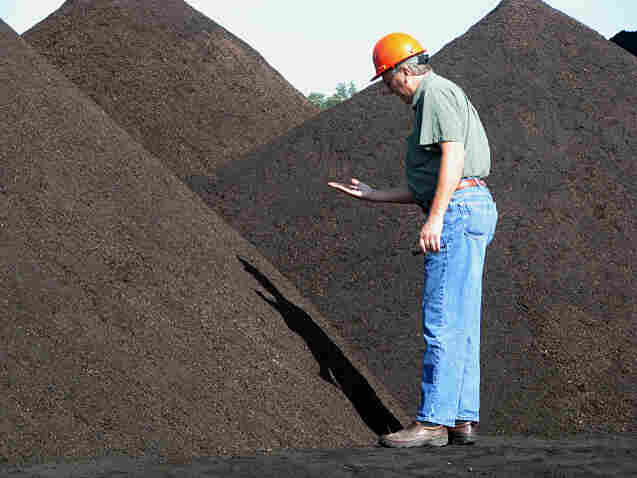 An employee of City Utilities in Springfield, Mo., inspects a sample of the company's torrefied wood