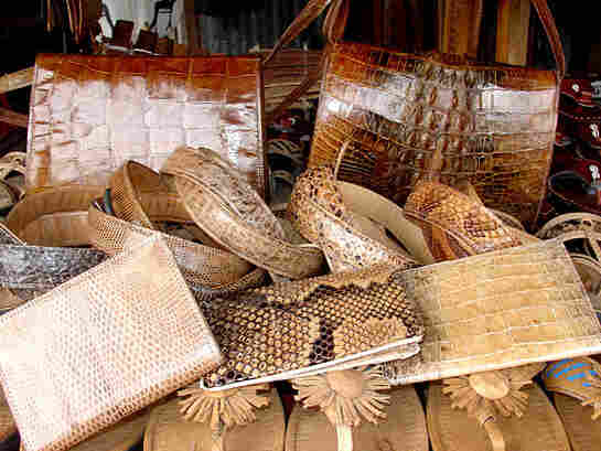 Leather products made from crocodile and other illegal skins.