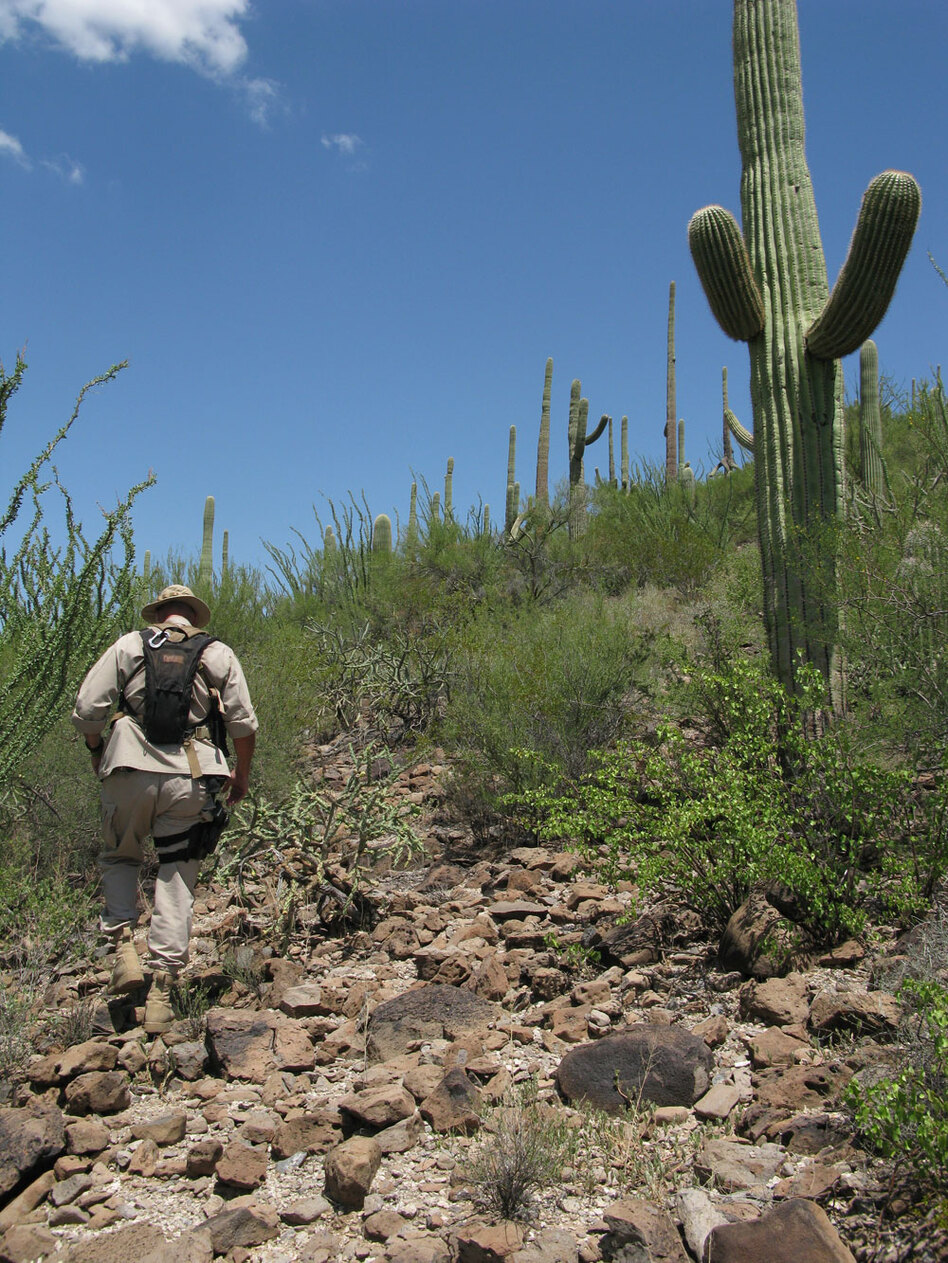 Border Patrol Search, Trauma and Rescue agent Paul Dubois is seen in the Sonoran Desert in southern Arizona, about 50 miles north of the Mexican border.