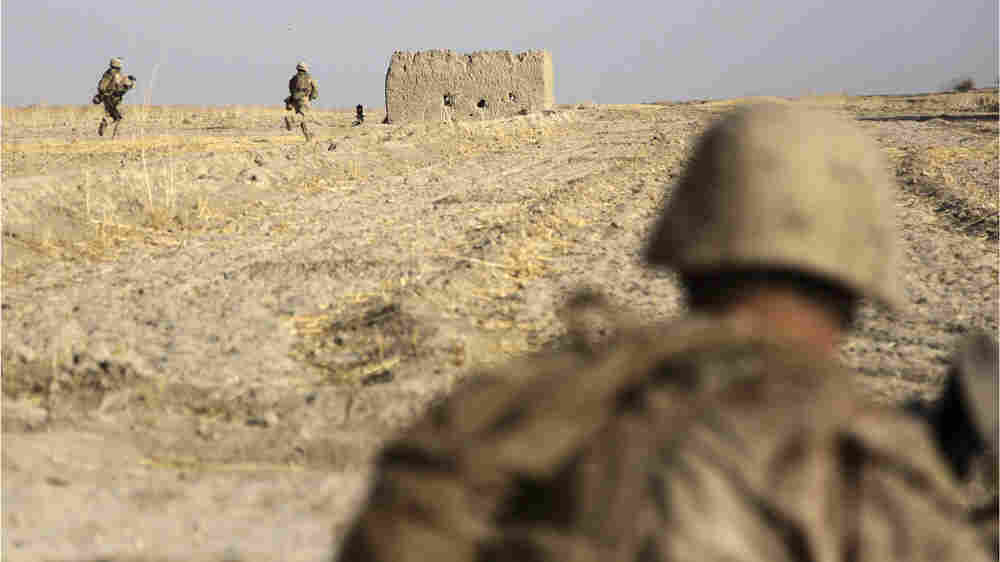 WIDE: U.S. Marines take position after being fired upon by Talian in Helmand province, Afghanistan