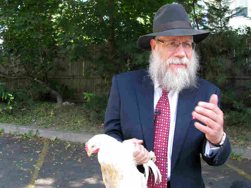 Rabbi Shea Hecht