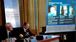 Fiber Optics, Imaging Pioneers Win Physics Nobel