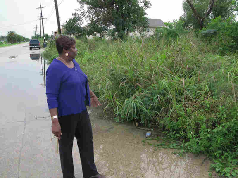 Lower Ninth Ward Neighborhood Council President Vera McFadden
