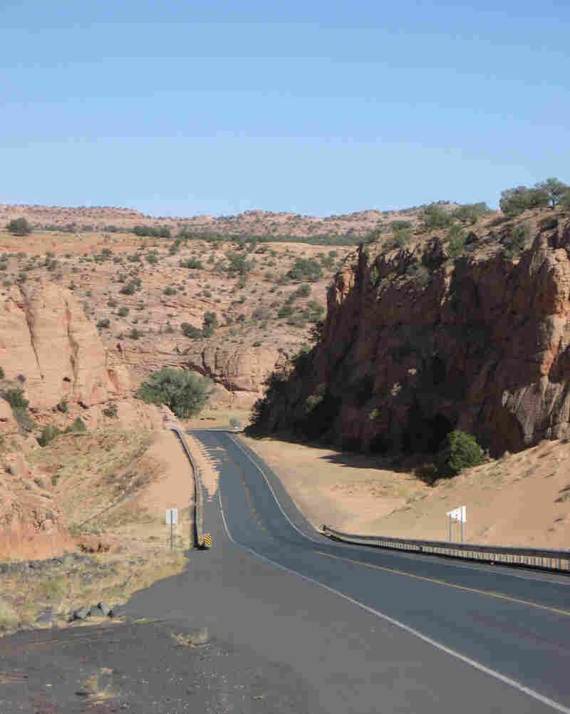 The road into Shonto Canyon