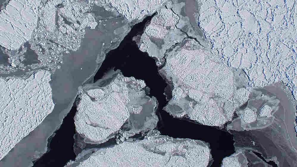 wide: An ice shelf of Antarctica