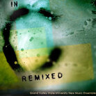 Cover of IN C remixed