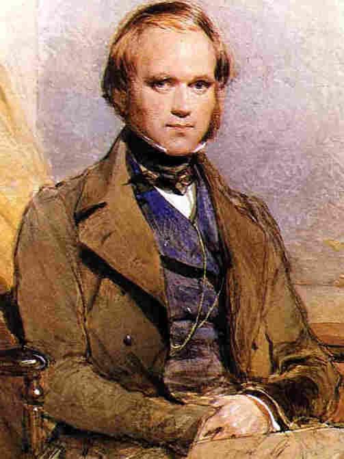 A portrait of Darwin