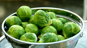 Brussels sprouts WIDE