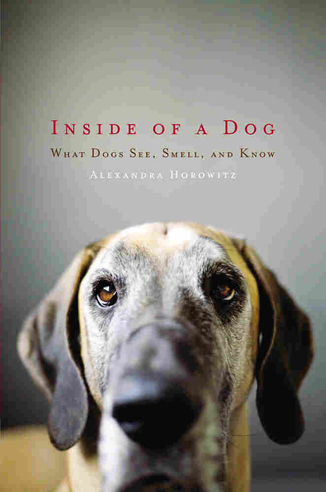 Cover of 'Inside of a Dog'