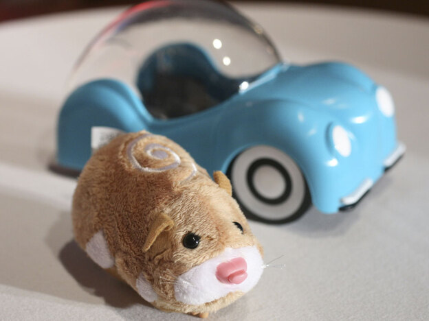 There's a dearth of Zhu Zhu robotic hamsters on toy store shelves this season because of unexpected demand.