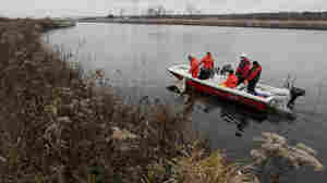 w-Crews search for Asian carp Thursday in the Chicago Sanitary and Ship Canal in Lockport, Ill.