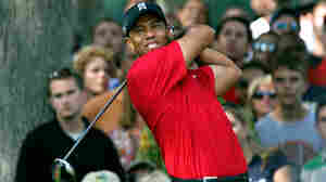 Amateur Comedians Have Field Day With Tiger Woods