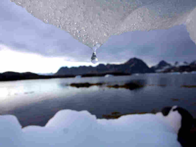 An iceberg melts in Kulusuk, Greenland.