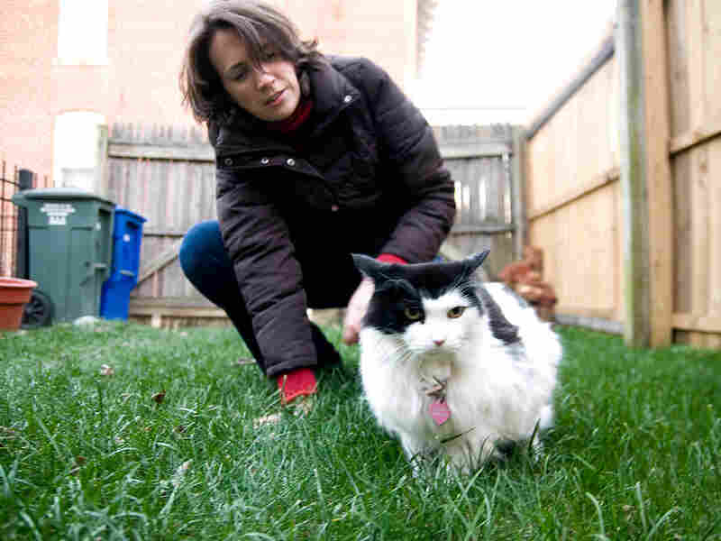 Anne Croft pets her cat, Wilhelmina, in her Washington backyard.
