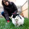 Anne Croft pets her cat, Wilhelmina, in her Washington backyard.