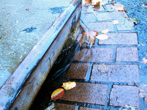When it rains, stormwater washes pollution from the air and from roadways into gutters, like this one in Washington, D.C. Sewer systems bring the runoff and the pollution into the tributaries of the Chesapeake Bay.