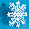 w. Eight-sided snowflake