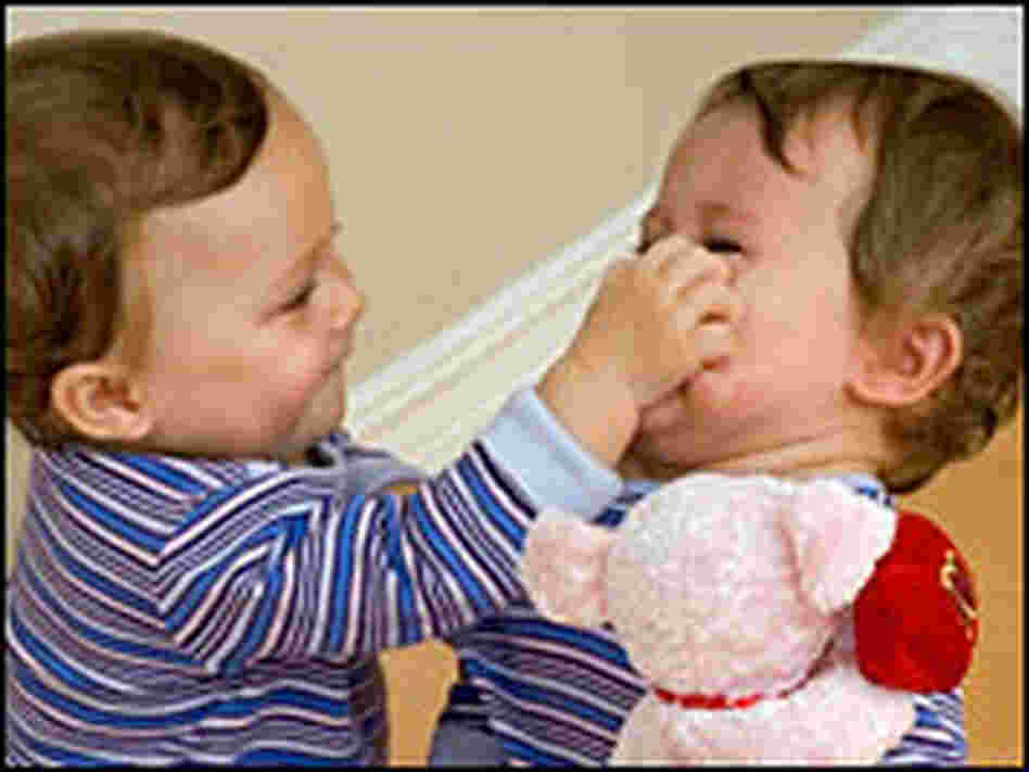 (O) Twin toddlers fight over a toy.
