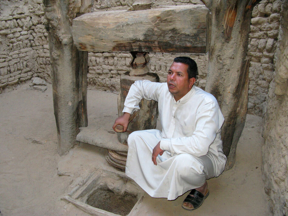 Dakhla resident, English teacher and sometimes guide Yasser Mohammed is shown with an ancient olive press in the old city of Al Qasr.