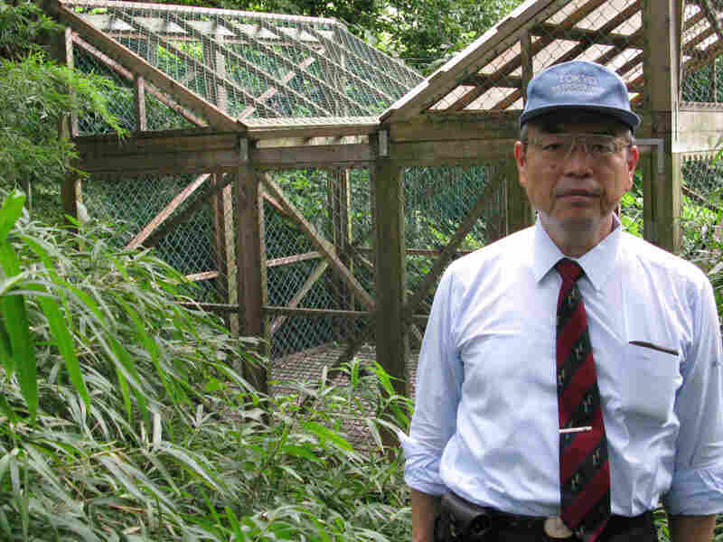 Koji Takagi, manager of Tokyo's Yoyogi Park, says the traps tend to catch younger, more inexperience