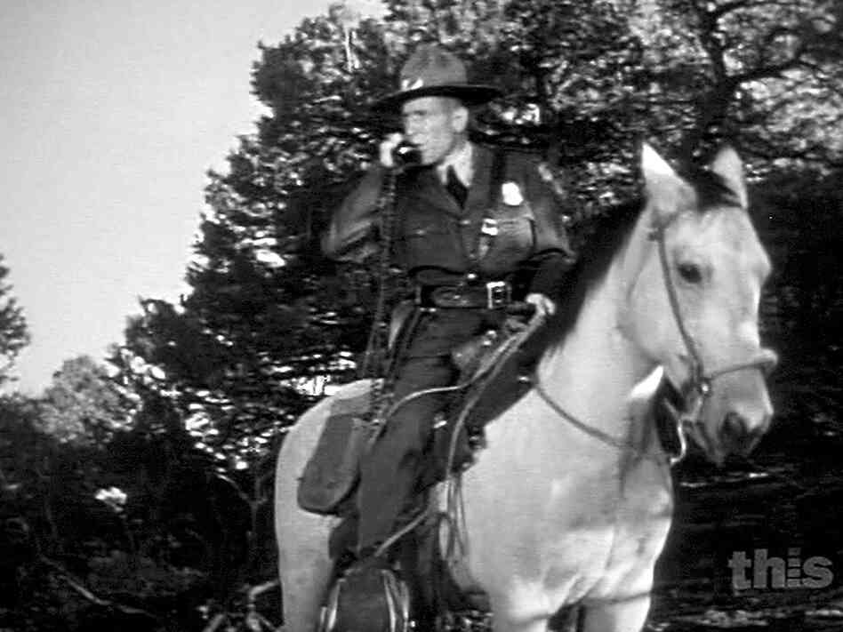 A police officer talks on a mobile phone while sitting on horseback.