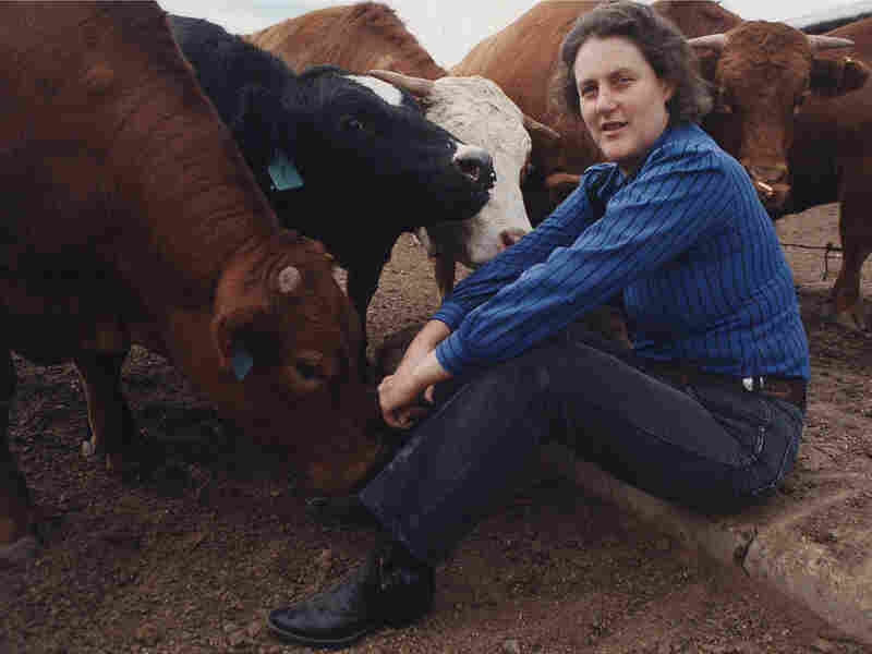 Temple Grandin, the subject of a new HBO biopic, set to air in February