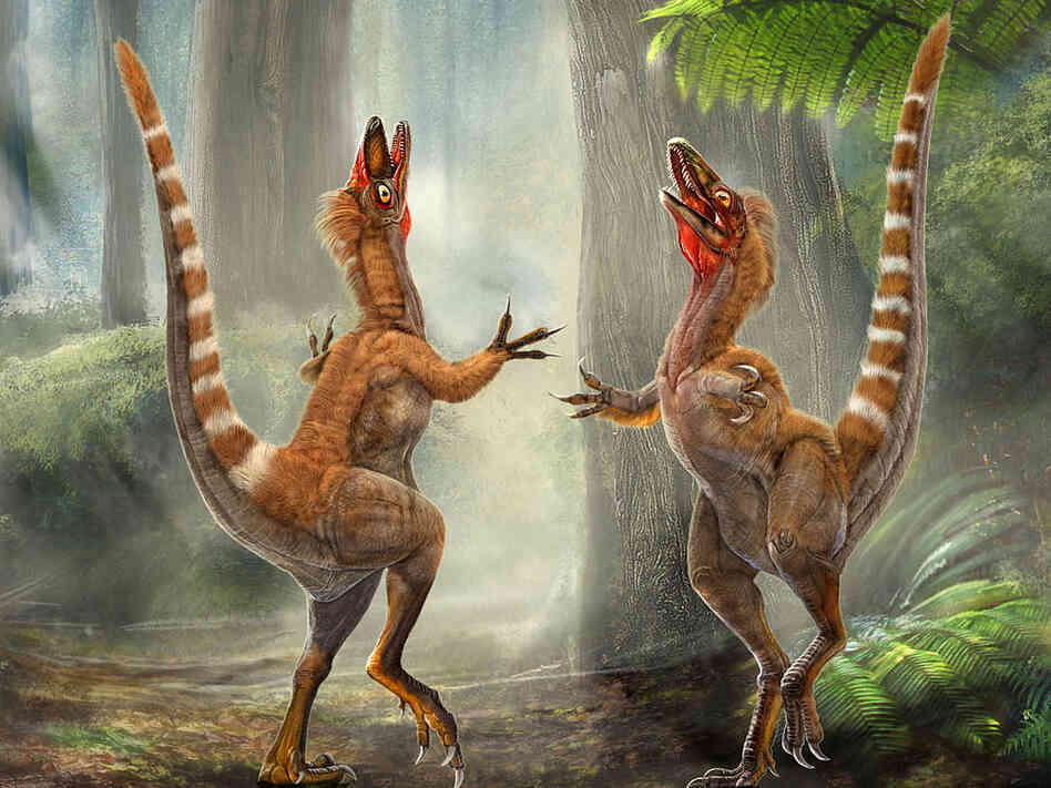 Artist rendition of two Sinosauropteryx