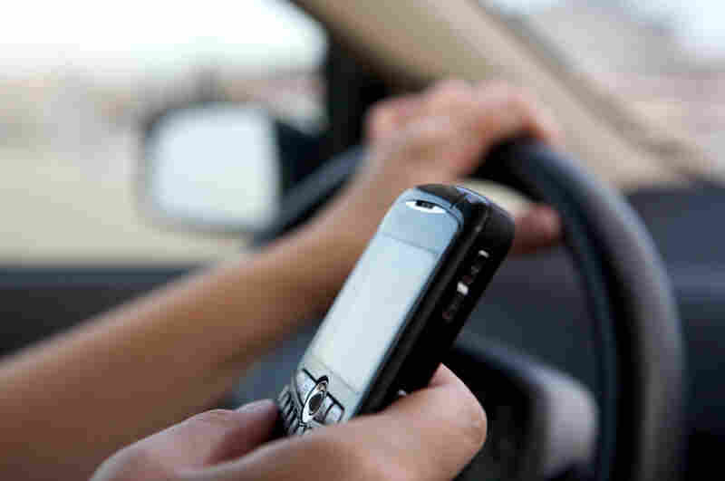 A person holds a cell phone and the driving wheel.