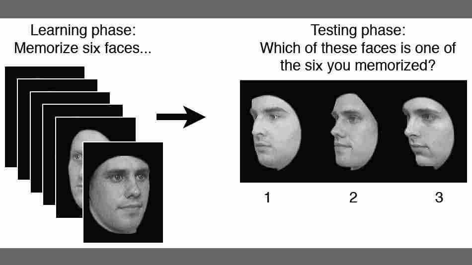 Facial Recognition Test