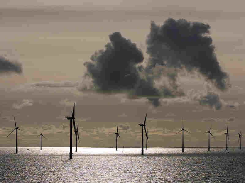 An offshore wind farm in Denmark, similar to the proposed farm off the coast of Massachusetts.