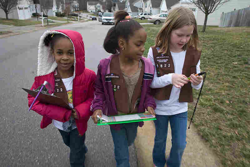 Girls Scouts canvass a north Raleigh neighborhood selling cookies in late January.
