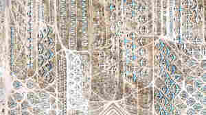 Google Earth images of the Davis-Monthan Air Force Base in Tuscon, Ariz.