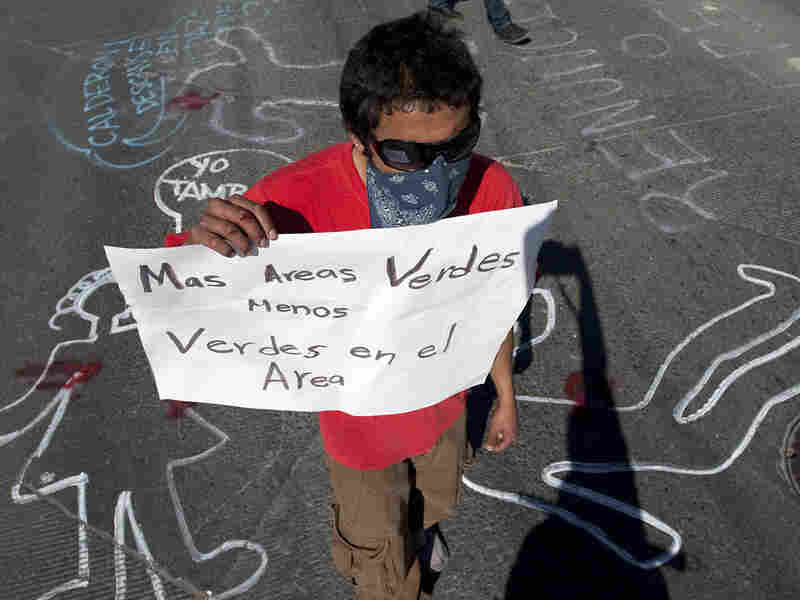 A demonstrator protests the arrival of Mexican President Felipe Calderon in Ciudad Juarez, Mexico