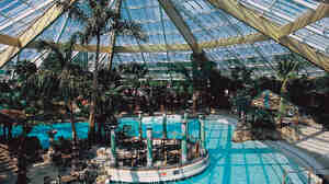 The Subtropical Swimming Paradise of Elveden Forest located in Suffolk, U.K