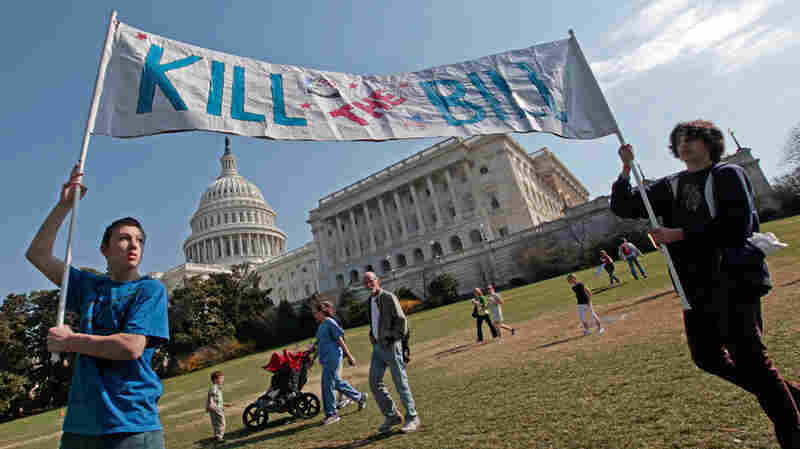 """Opponents of the health care bill carry a """"Kill the Bill"""" sign. Charles Dharapak/AP"""
