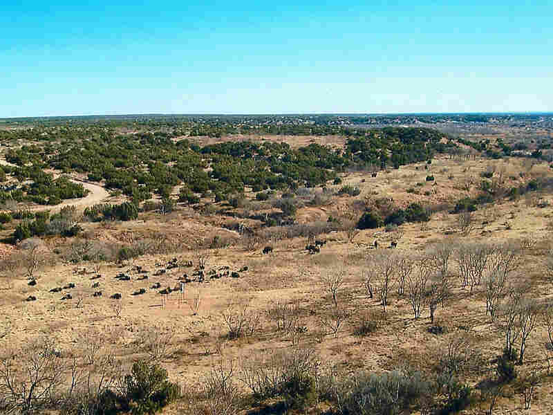 View of the QB Ranch in West Texas