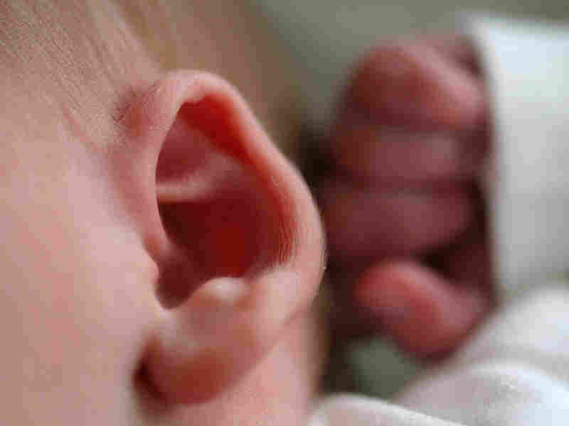 Close-up of a baby's ear