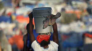 A woman carries water through a crowded refugee camp for earthquake victims on Feb. 7 in Haiti.
