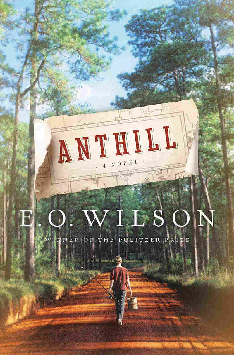 The cover of E.O. Wilson's new book, 'Anthill'