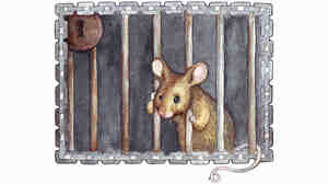 A painting of a forlorn mouse in jail