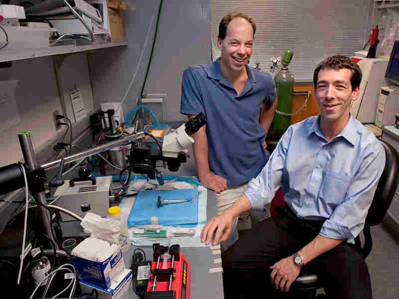 Stephen Quake (left) and Euan Ashley in the lab together.
