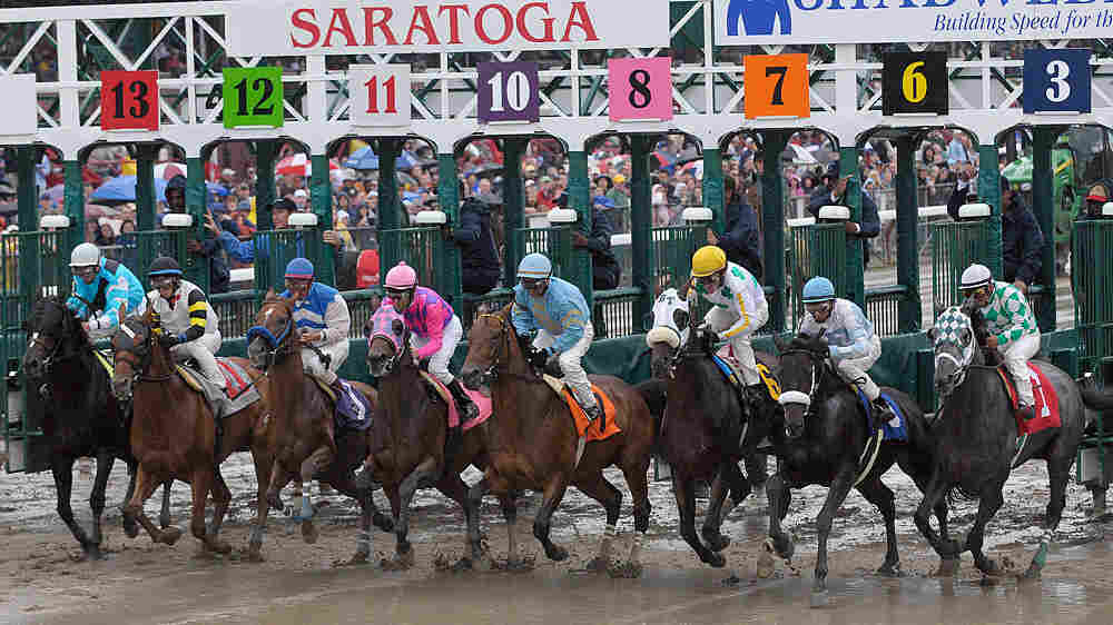 Horse racing in New York state seemed to be turning around.