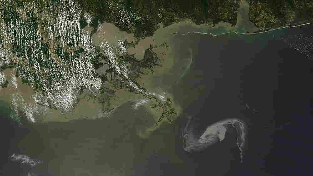 This satellite image shows the oil slick in the Gulf of Mexico as it nears the Louisiana shoreline.