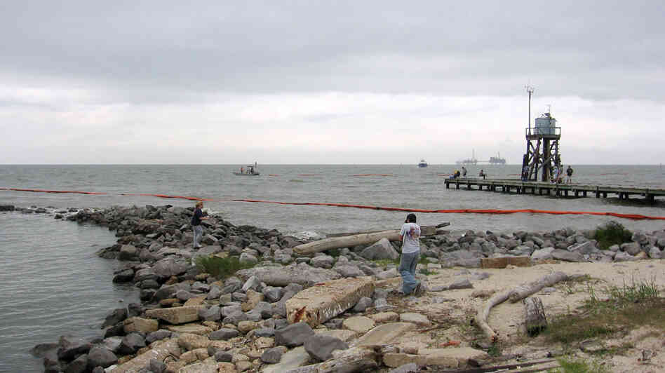 Containment booms circle Dauphin Island at the mouth of Mobile Bay in Alabama. Debbie Elliott/NPR