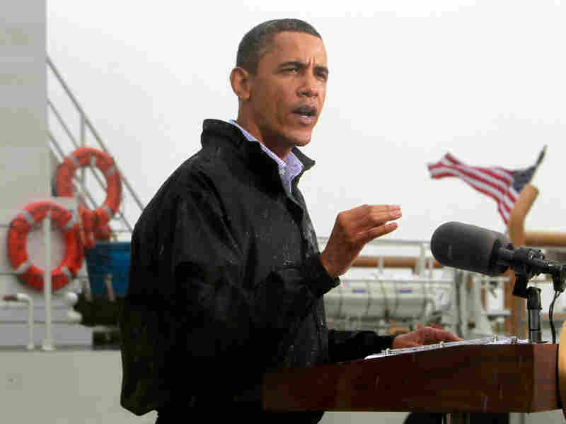 President Obama makes a statement to reporters on the Gulf Coast spill.