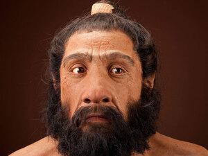 http://media.npr.org/assets/news/2010/05/06/neanderthal1.jpg?t=1273176776&s=2