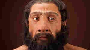 Hey Good Lookin': Early Humans Dug Neanderthals