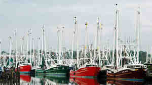 Fishing boats sit idle on the docks at Bayou La Batre, Ala.