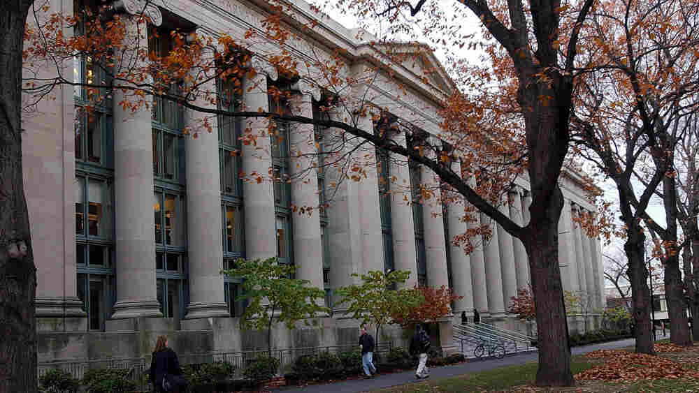 Students walk through the Harvard Law School area