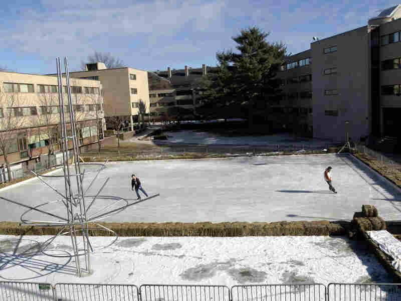 The ice rink at Harvard University Law School